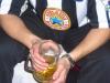 Zjazd kibiców Newcastle Utd w Busku (2008)