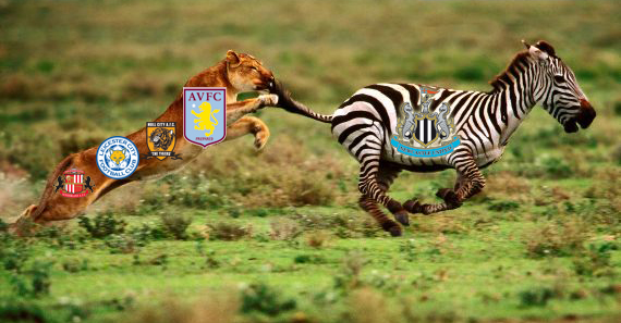 lion_chasing_zebra_wallpaper kopia